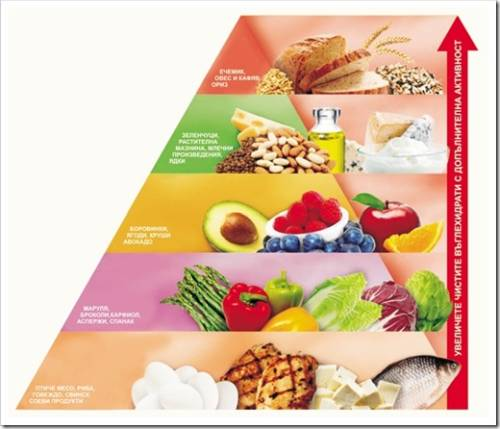 Как правильно применить диету Аткинса?