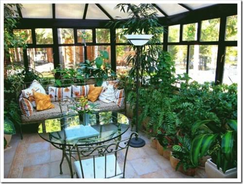 Как сделать и оформить зимний сад дома?