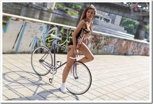 Различия мужского и женского велосипедов