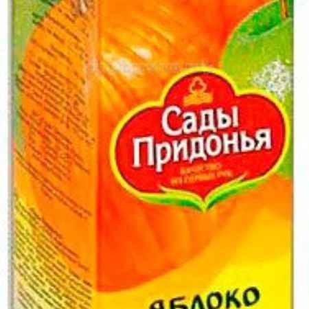 Купить Сады Придонья Сок яблоко тыква с 3 лет 1 л