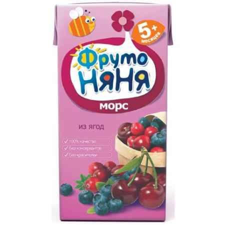 Купить ФрутоНяня Морс из ягод с 5 мес., 200 мл (тетра пак)