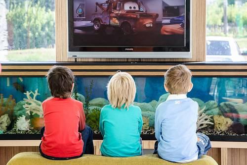 цифровое телевидение через интернет фрегат тв