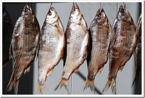 Как правильно выбрать и хранить вяленую рыбу