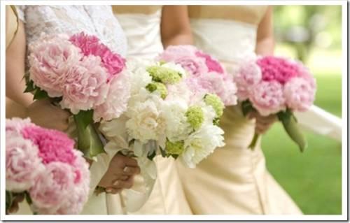 Какие цветы дарить не следует?