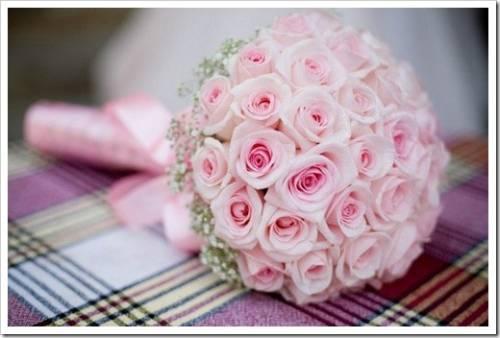 Какие цветы предпочесть?