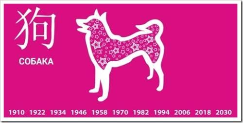 Земляная собака: женский знак гороскопа