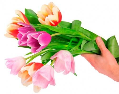 какие цветы дарить женщинам