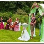 Музыкальное сопровождение свадеб