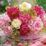 С какими цветами сочетаются пионы