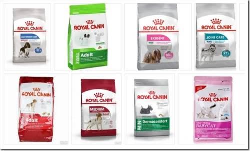 Виды собачьих кормов Royal Canin